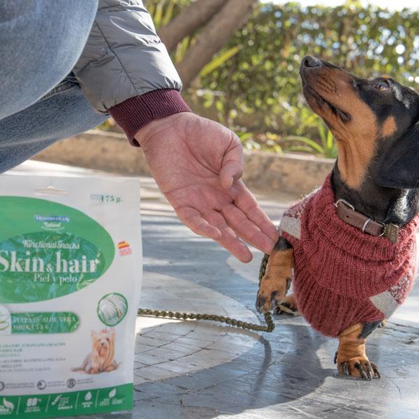 Elma Dachshund Mini y Functional Snacks para perros de Mediterranean Natural