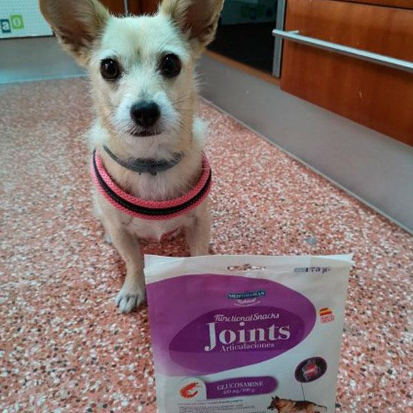 Kira y Ricky y Functional Snacks articulaciones para perros de Mediterranean Natural
