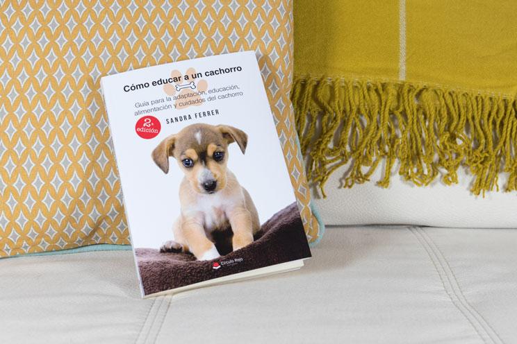 """""""Cómo educar a un cachorro"""": Una guía útil y sencilla para familias con perro"""