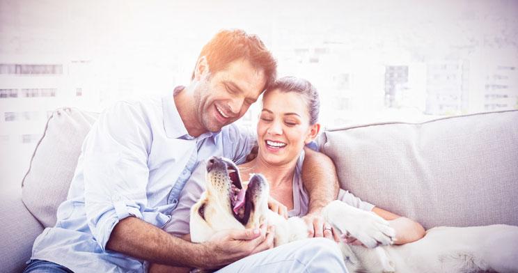 Más de la mitad de los dueños de perros dejarían a su pareja si a su perro no le agradara