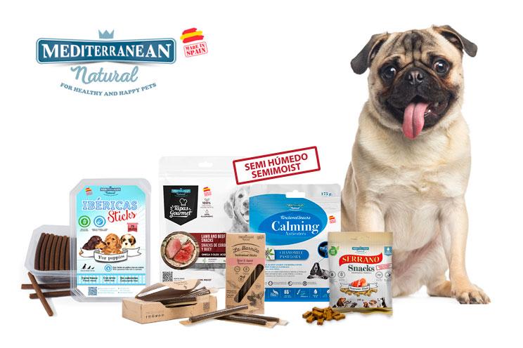 Cual-es-el-mejor-snack-para-adiestrar-a-mi-perro-5