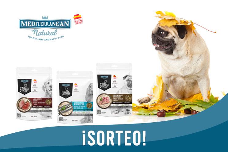 Sorteo de otoño: ¡Llévate gratis nuestras Tapas Gourmet para perros!