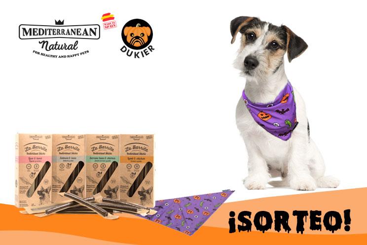 Sorteo de Halloween: ¡Llévate gratis nuestra Barrita y esta bandana para tu perro!