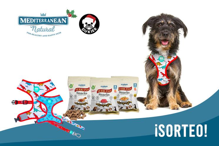 Sorteo de Navidad: ¡Llévate gratis nuestros Serrano Snacks y este arnés y correa para tu perro!