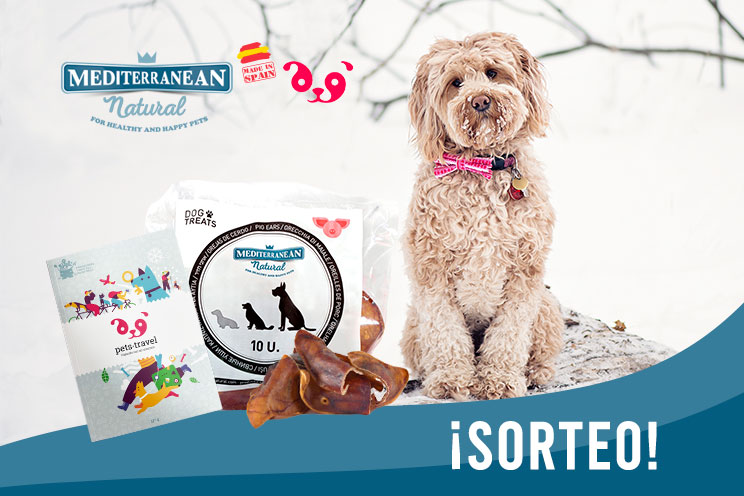 Sorteo: ¡Llévate gratis una bolsa de orejas de cerdo y una guía para viajar con tu perro!