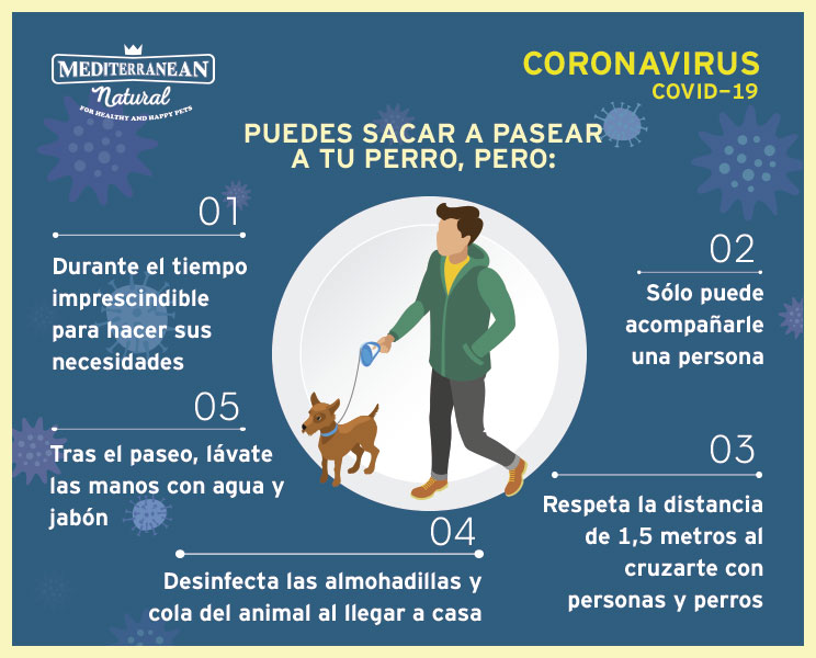 Pandemia coronavirus COVID-19 ¿Puedo pasear a mi perro?