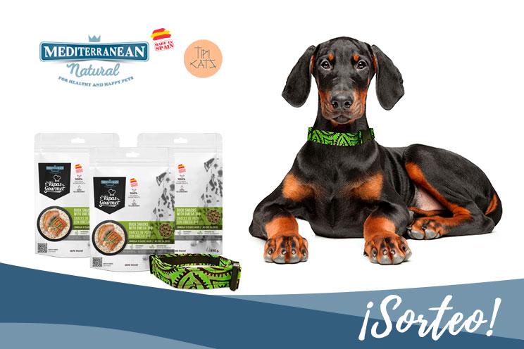 Sorteo: Llévate gratis nuestras Tapas Gourmet de pato y este collar para tu perro