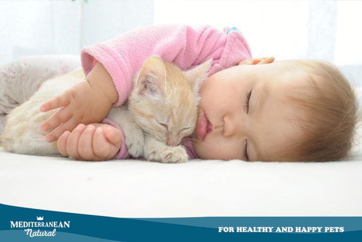 Cómo ayudar a nuestro gato en la adaptación ante la llegada de un bebé