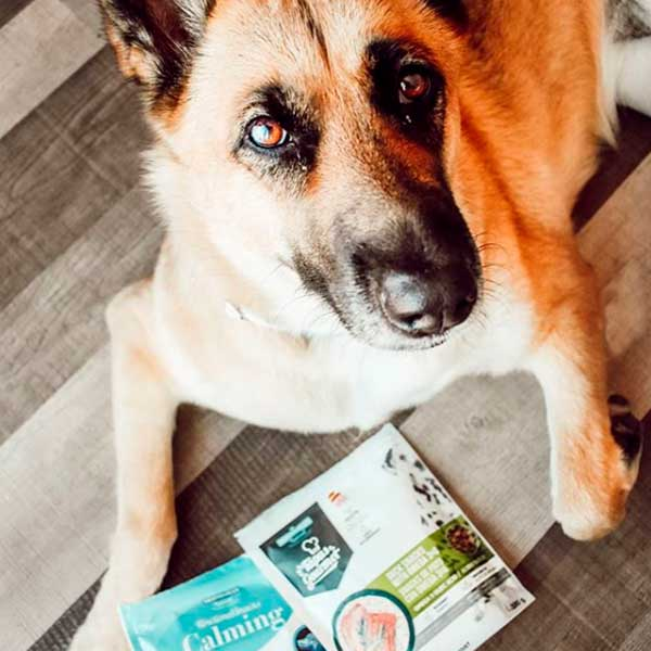 Functional Snacks Pelo y Piel de Mediterranean Natural para Perros