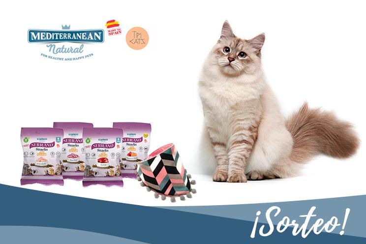 Sorteo: ¡Llévate gratis nuestros Serrano Snacks y esta bandana para tu gato!