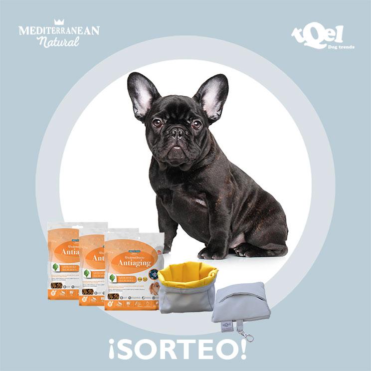 Sorteo: 'Llévate gratis nuestros Functional Snacks Antiaging y un comedero portátil para tu perro