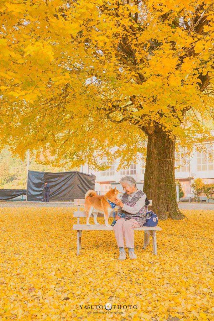 Yasuto: El fotógrafo japonés, su abuela y su Shiba Inu