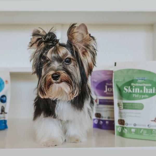 El Blog de Denver y Functional Snacks para perros Mediterranean Natural