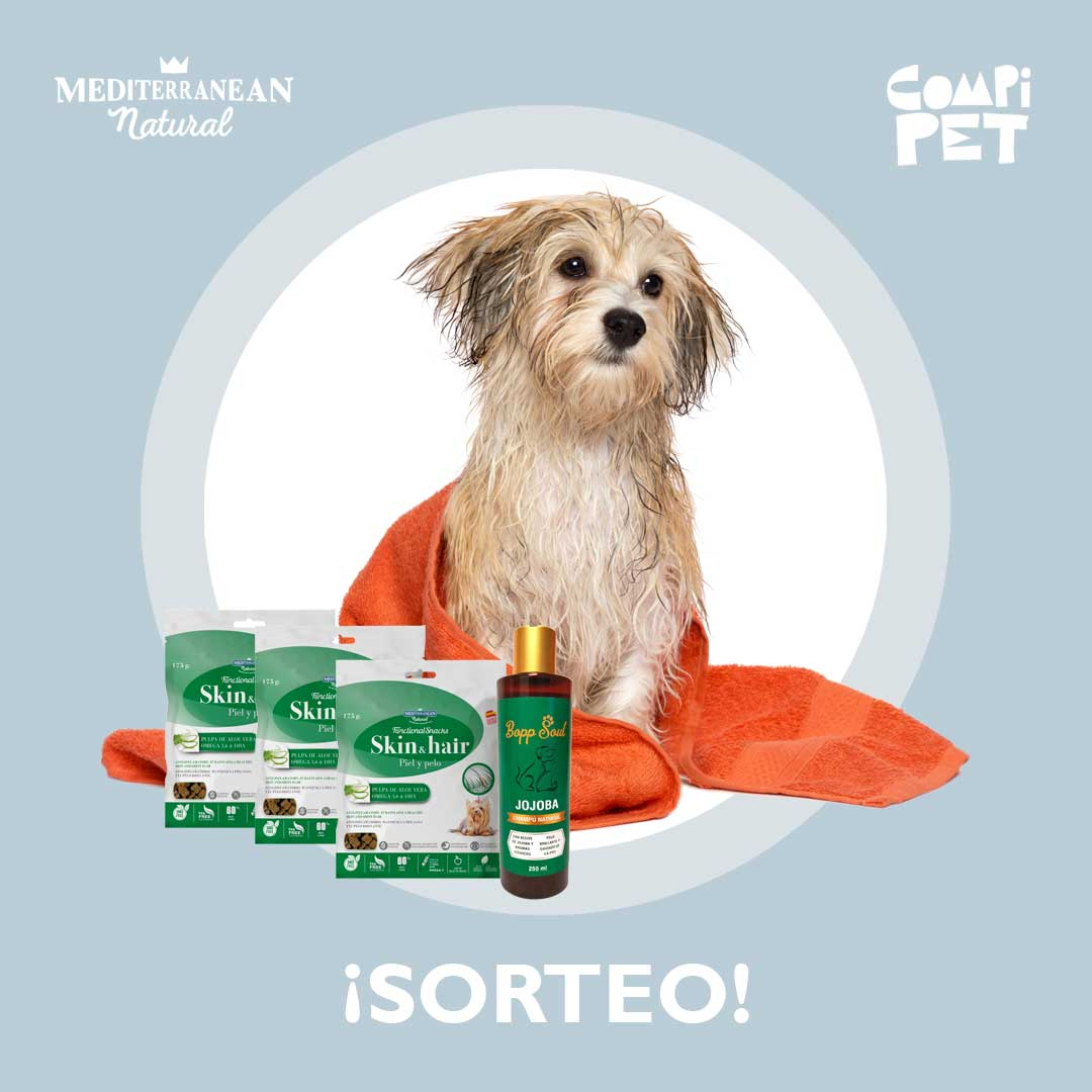 Sorteo: Llévate gratis nuestros Functional Snacks piel y pelo y un champú ecológico para tu perro