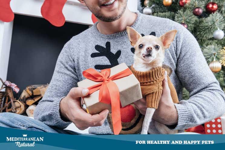10 ideas para regalar a amantes de los perros