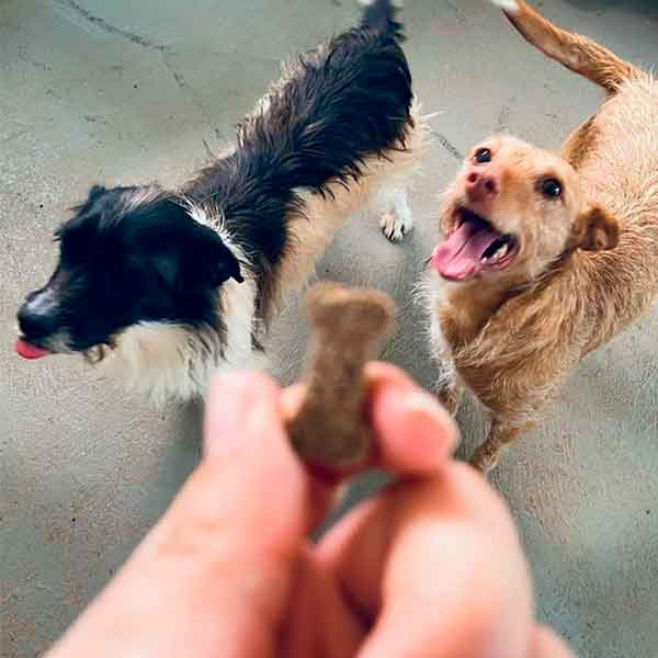 Perrunenando snacks para perros meditarranean natural