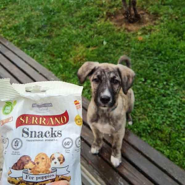 ally dog snacks para perros cachorros mediterranean natural