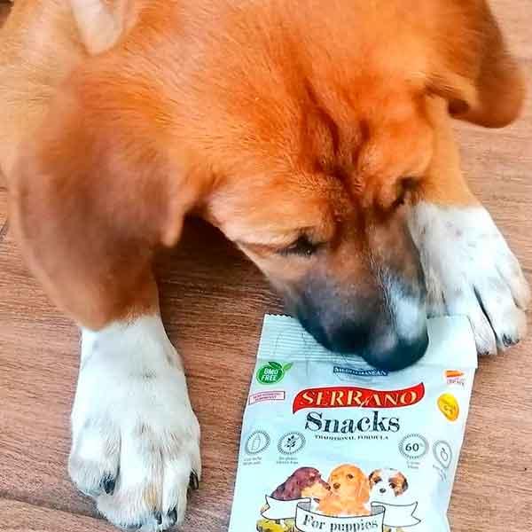 otto con los serrano snacks para perro cachorros de mediterranean natural
