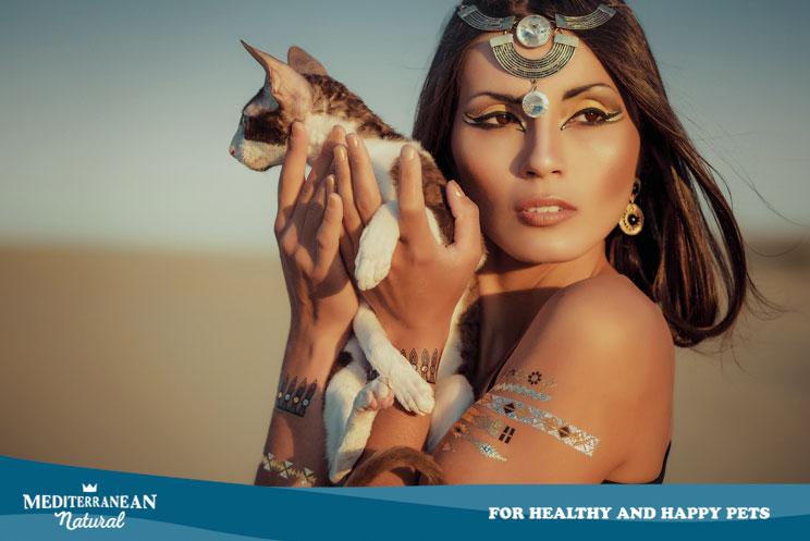 ¿Qué animales tenían los egipcios como mascota?